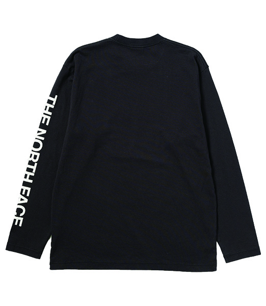 THE NORTH FACE L/S Tested Proven Tee NT82032