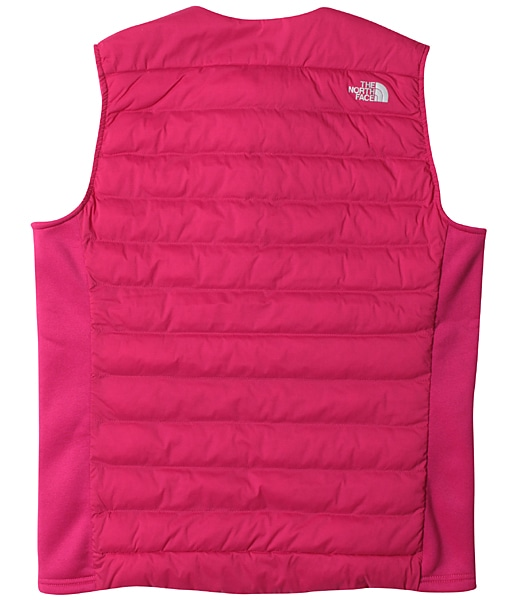 THE NORTH FACE Red Run Pro Vest (NYW81875)