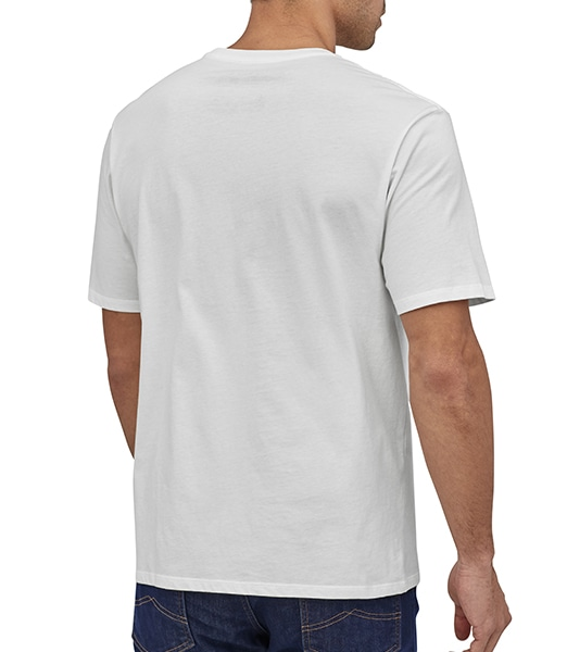 PATAGONIA Fitzroy Scope Organic Cotton T-sihrts 2020SS